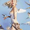 Vogel| birds freedom