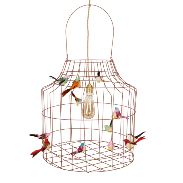 bird cage hanging lamp Dutch Dilight