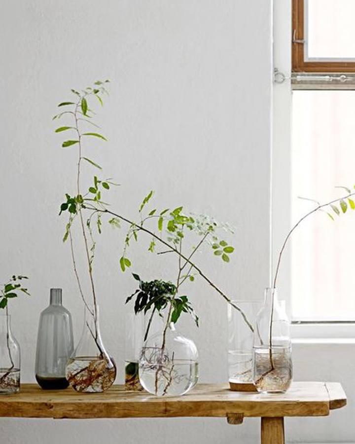botanisch interieur gras in huis