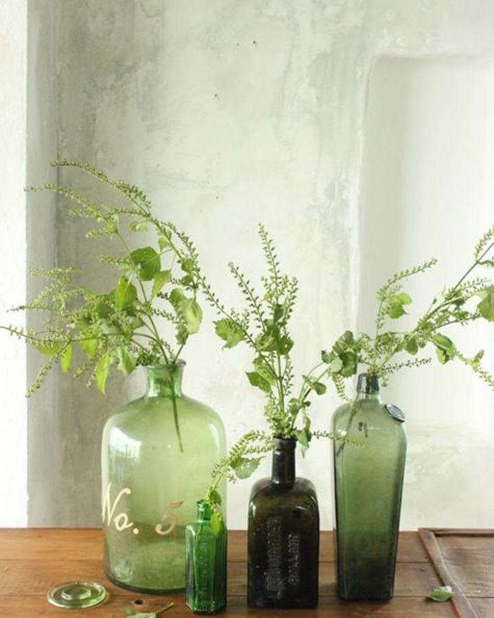botanisch interieur gras in vaas