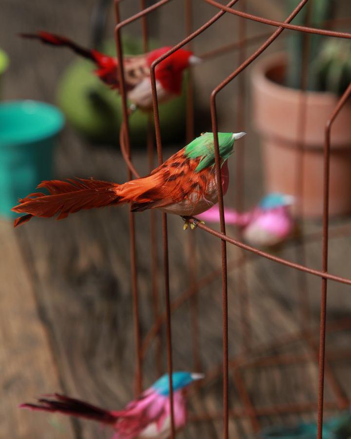 vogellamp vogeltuin Eigen Huis en Tuin